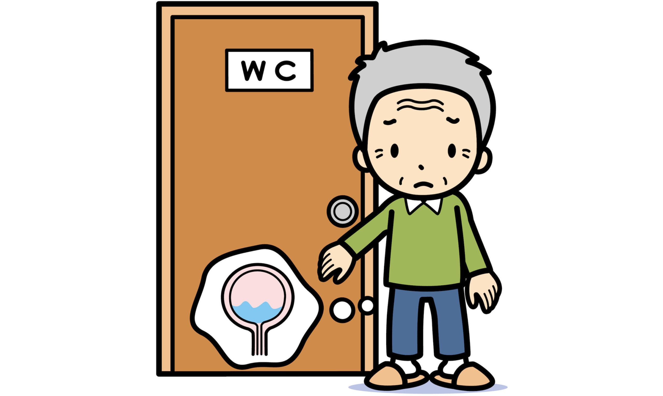 排尿障害(尿失禁、頻尿、排尿困難、尿閉)とは? 主な症状や原因、治療方法は?